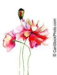stylisé, pavot, fleurs, illustration
