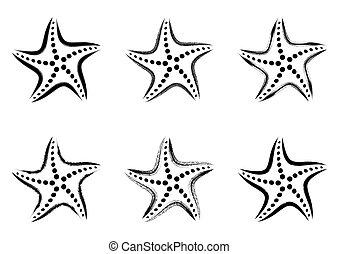 stylisé, vecteur, noir, etoile mer, icônes