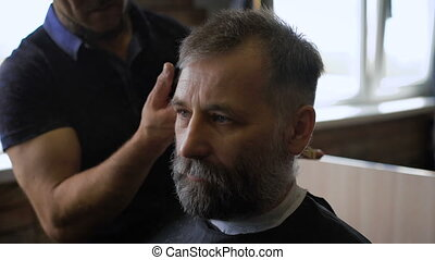 Stylish Barber works with the haircut. Client aged with gray hair and beard.