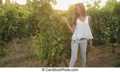 Stylish girl with long hair touches the vine at sunset