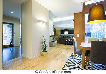 Stylish interior modern home