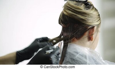 Stylist apply hair coloring on woman hair in beauty studio.