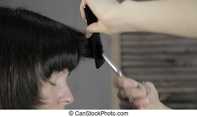 stylist cuts a hair for a young woman in a beauty salon, makes a hairstyle for a girl