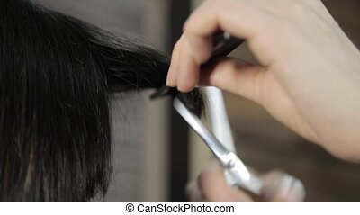 stylist cuts a hair for a young woman in a beauty salon,...
