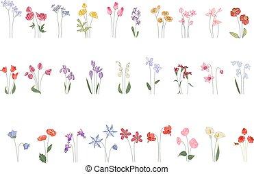 stylized, anders, bloemen, witte , verzameling