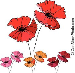 Stylized cute red poppy isolated on white background