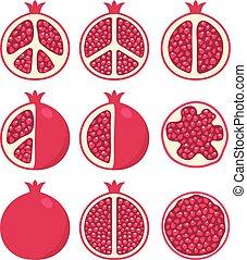 stylized, granaatappels, vector, set