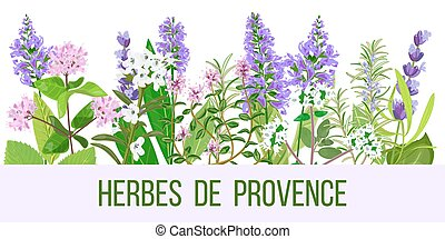 Stylized herbal backgrounds in wide-screen format