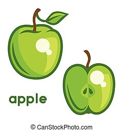 Stylized illustration of fresh apple on white background