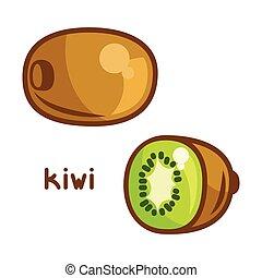 Stylized illustration of fresh kiwi on white background