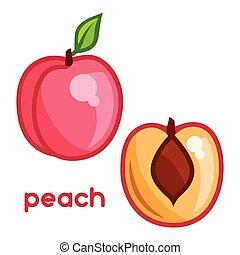 Stylized illustration of fresh peach on white background.