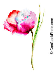 stylized, klaproos, bloem, illustratie