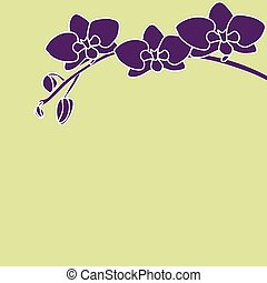 Stylized orchid branch on color background pistachios.