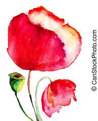 Stylized Poppy flowers watercolor illustration