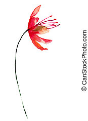 Stylized red flower, watercolor illustration