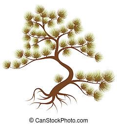 Tree cedar - Stylized Tree cedar with needle, for design
