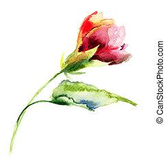 stylized, watercolor, bloem, illustratie
