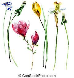 stylized, watercolor, bloemen, illustratie