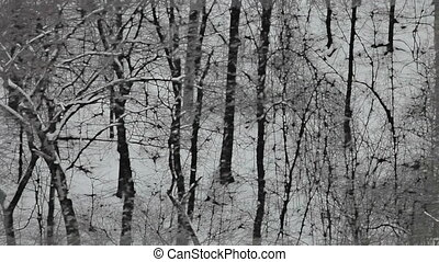 Snowing in the forest stylized to look like a painting