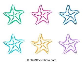 stylizowany, wektor, barwny, rozgwiazda, ikony