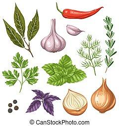 stylizowany, zioła, komplet, różny, przyprawy