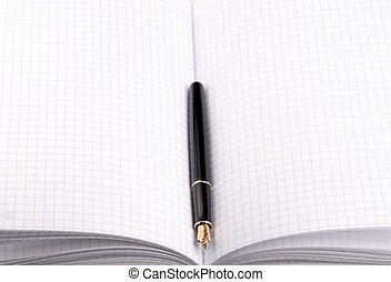 stylo fontaine, sur, papier, cahier