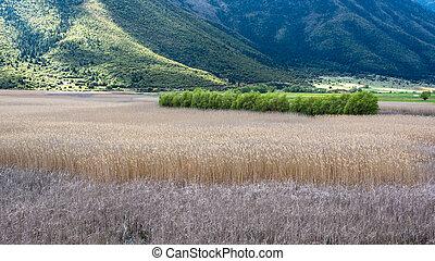 Stymfalia Wetland in Peloponnese, Greece - Landscape of ...