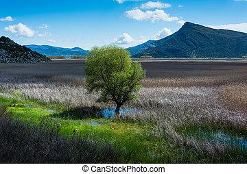 Landscape of Stymfalia Lake in Peloponnese, Greece