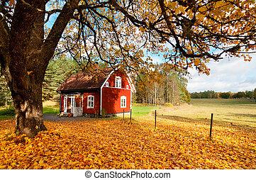 suédois, maison, feuilles automne, entre