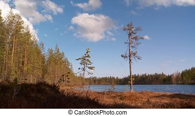suédois, nature