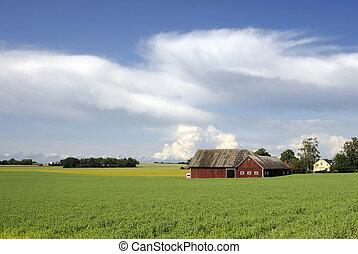 suédois, paysage