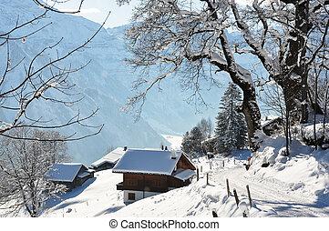 suíça, paisagem, braunwald, alpino