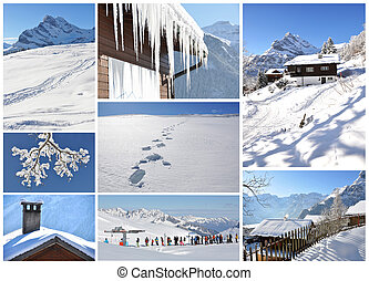 suíço, famosos, braunwald, esquiando, recurso