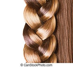su., marrone, hairstyle., sano, capelli lunghi, chiudere, ...