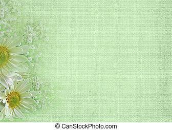 suave, verde
