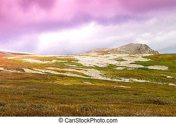 suavemente, declivoso, colinas, e, pastel, colors., pedras, sob, a, cor-de-rosa, sky., viagem, em, a, colina, country.