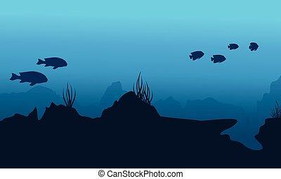 subacqueo, corallo, silhouette, paesaggio, scogliera