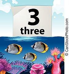 subacqueo, fish, numero tre