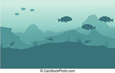 subacqueo, fish, silhouette, fondo