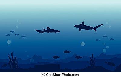 subacqueo, fish, vario, silhouette, fondo