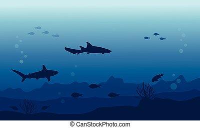 subacqueo, fish, vario, silhouette, paesaggio