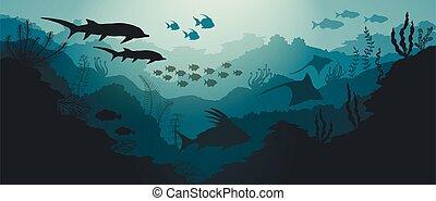 subacqueo, mare, fish, corallo, fondo, scogliera, alghe
