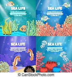 subacqueo, set, paesaggio