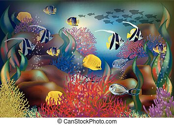 submarinas, peixe, ilustração, tropicais, vetorial, fundo