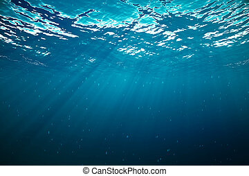 submarinas, profundo, tropicais, fazendo, sea., sunrays, 3d