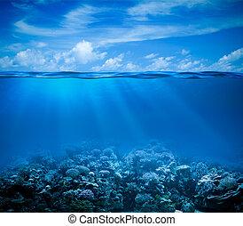 submarinas, recife coral, seabed, vista, com, horizonte, e,...