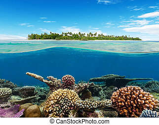 submarino, barrera coralina, con, isla tropical