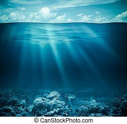 submarino, barrera coralina, fondo del mar, y, superficie...