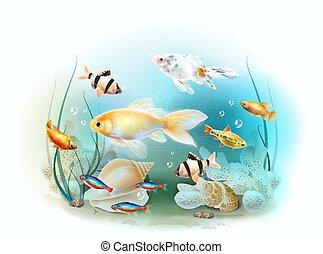 submarino, fish., ilustración, tropical, acuario, world.