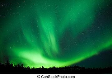 substorm, aurora boreal, taiga, bosque, remolino, boreal